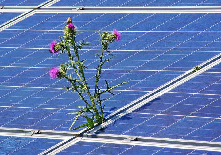 new/photovoltaic-4244774_960_720.jpg